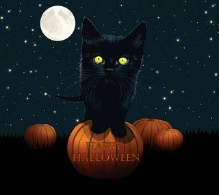 Обои на телефон хэллоуин, черные, счастливые, луна, кошки, halloween cat
