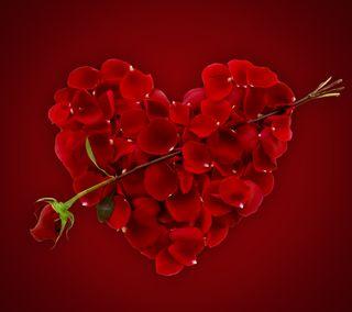Обои на телефон лепестки, сердце, розы, любовь, красые, валентинка, romanric, petal heart, love