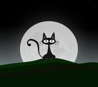 Обои на телефон юмор, мяу, котята, милые, луна, кошки, забавные, глаза