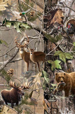 Обои на телефон камуфляж, турецкие, охота, олень, медведь, realtree, moose