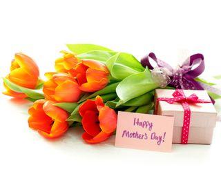 Обои на телефон тюльпаны, цветы, счастливые, матери, день, happy