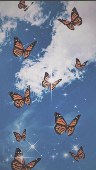Обои на телефон крылья, бабочки, mariposa 2
