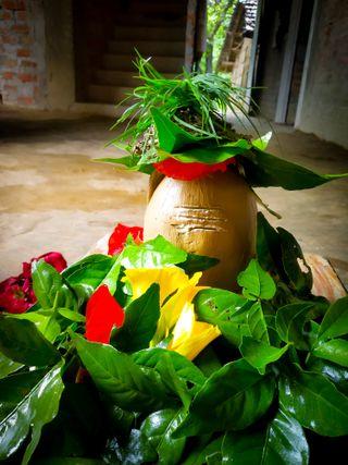 Обои на телефон махакал, маргаритка, шив, цветы, shivshankar, jasmine, bholenath, bholebaba, baba