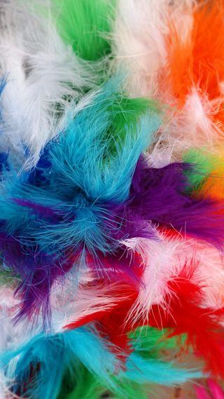 Обои на телефон перья, цветные, перо