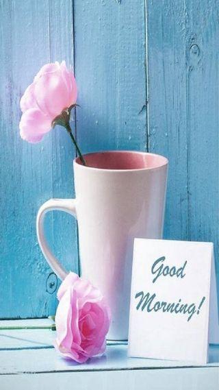 Обои на телефон чашка, утро, розы, cup
