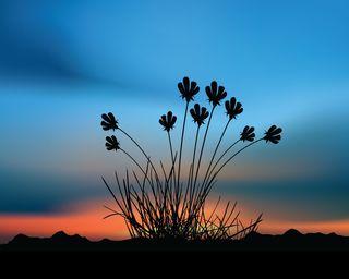 Обои на телефон силуэт, трава, солнце, небо, классные, закат, sunset grass
