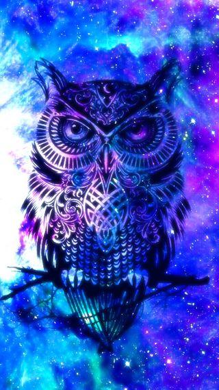 Обои на телефон сова, фиолетовые, синие, абстрактные