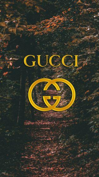Обои на телефон цветные, природа, логотипы, дерево, гуччи, бренды, tumblr, gucci