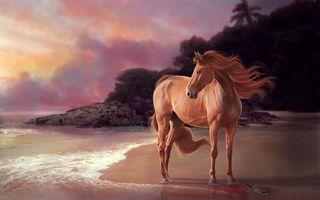 Обои на телефон лошади, фон, приятные, мустанг, лошадь, животные, арт, mustang, art