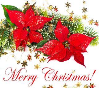 Обои на телефон пожелания, фон, украшение, счастливое, сезон, рождество