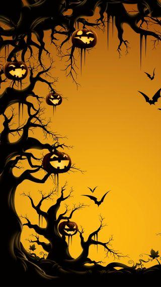 Обои на телефон тыква, хэллоуин, оранжевые, летучие мыши, дерево, halloween tree