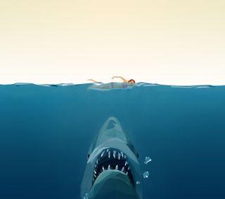 Обои на телефон ешь, акула, рисунки, море, вода, swim