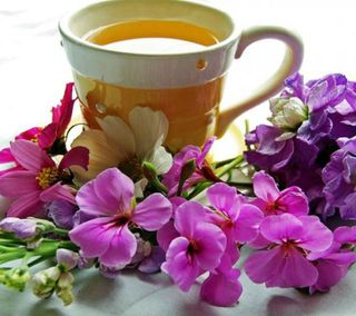 Обои на телефон чай, чашка, цветы, утро, прекрасные, кофе, good, coffee cup