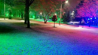 Обои на телефон promnight, природа, красые, ночь, зеленые, цветные, зима, снег, дерево, свет, фантастические