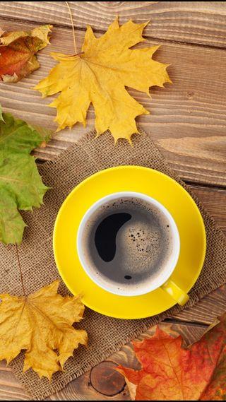 Обои на телефон чашка, утро, стол, листья, кофе, желтые, дерево, maple, cup