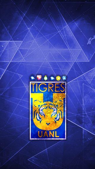 Обои на телефон чемпион, мексика, футбол, сан, uanl, tigres, san nicolas, norte, monterrey