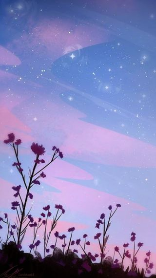 Обои на телефон цветы, милые, звезды, закат, whatsapp, nube, hd, fondo, atardecer floreado
