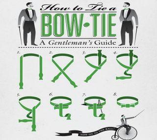 Обои на телефон стильные, лук, галстук, man, guide, gentleman, bow tie