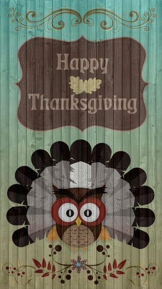 Обои на телефон благодарение, турецкие, текстуры, сова, праздник, перо, дерево, harvest