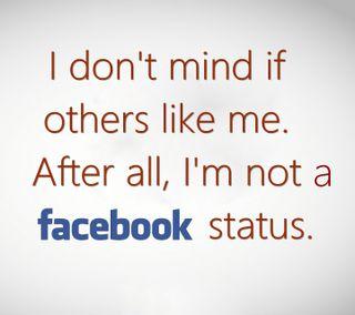 Обои на телефон фейсбук, статус, ненависть, приятные, отношение, любовь, комедия, забавные, love, hater, facebook status