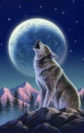 Обои на телефон фотошоп, луна, волк