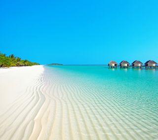 Обои на телефон песок, супер, синие, рай, пляж, пальмы, новый, небо, море, крутые, зеленые, дом