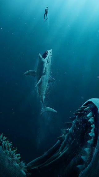 Обои на телефон акула, синие, природа, океан, мужчина, море, зубы, вода, dive