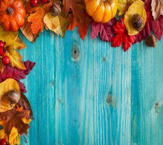 Обои на телефон украшение, осень, autumn  decoration