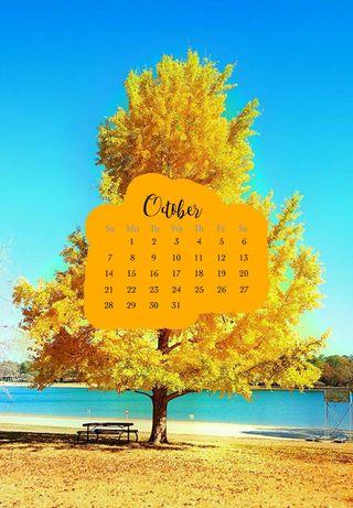 Обои на телефон календарь, цитата, осень, октябрь, зима, жизнь, весна, supreme