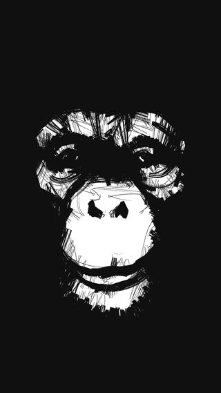 Обои на телефон обезьяны, грани, s7, monkkey