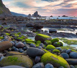 Обои на телефон рокки, природа, пляж, пейзаж, небо, камни, зеленые, живописные, rocky beach, moss
