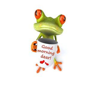 Обои на телефон утро, лягушка, кофе, забавные, good, 3д, 3d