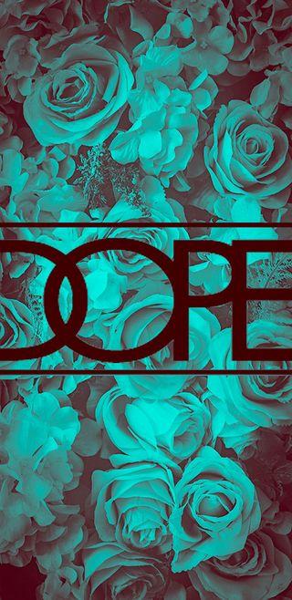 Обои на телефон цвет морской волны, цветы, синие, розы, зеленые, бирюзовые, most dope, dope, aquamarine, aestheitc