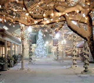 Обои на телефон праздник, природа, ночь, зима