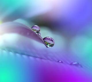 Обои на телефон капли дождя, красочные