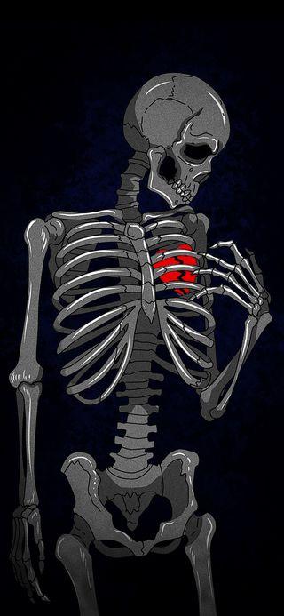 Обои на телефон скелет, сердце, break heart-skeleton, brake heart