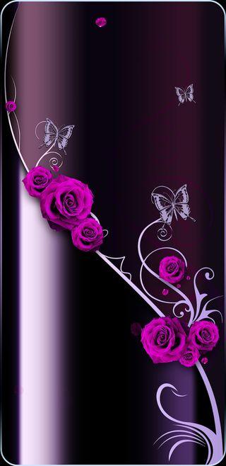 Обои на телефон фиолетовые, цветы, симпатичные, розы, розовые, прекрасные, бабочки, vine, rosevine