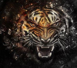 Обои на телефон крикет, тигр, галактика, the tiger, galaxy