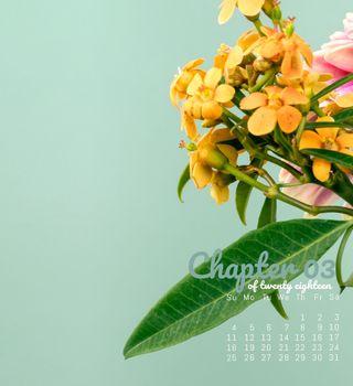 Обои на телефон март, календарь, цветы, продуктивность, календари, march flowers