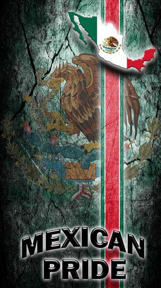 Обои на телефон прайд, мексиканские, мексика, орел