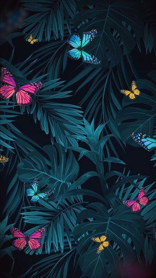 Обои на телефон зеленые, selva, rosas, plantas, mariposa, hd, fondo