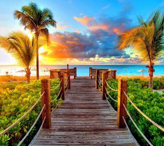 Обои на телефон природа, пляж, пальмы, океан, море, закат