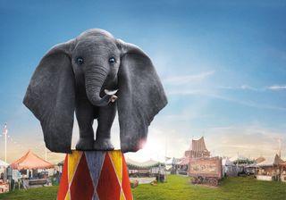 Обои на телефон слон, дисней, анимация, dumbo, disney, circus
