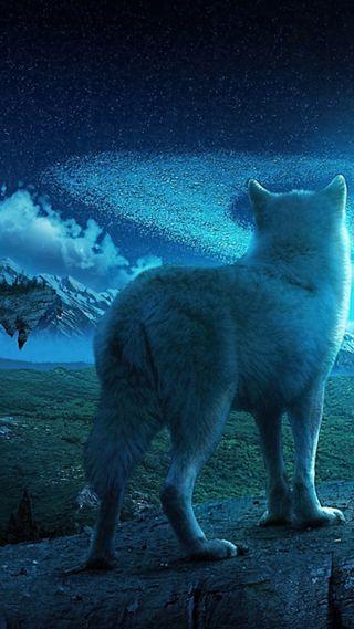 Обои на телефон фантазия, синие, природа, космос, вселенная, волк, wolves beyond, land