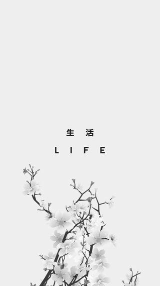 Обои на телефон вишня, цвести, симпатичные, свет, минимализм, заблокировано, жизнь, kanji, 929