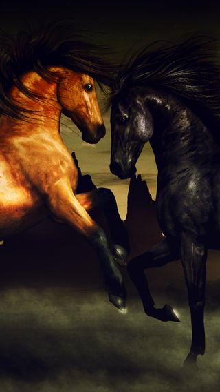 Обои на телефон лошади, любовь, лошадь, красота, stallion, love, fast