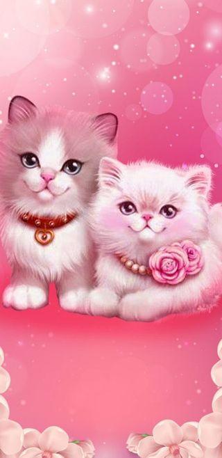 Обои на телефон коты, милые