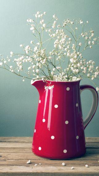 Обои на телефон элегантные, цветы, белые, white flowers, decent
