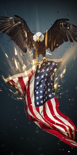 Обои на телефон свобода, орел, сша, америка, usa eagle