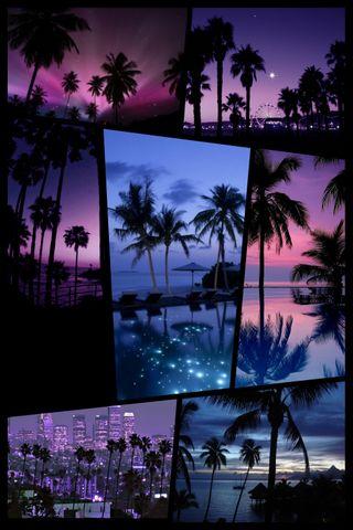 Обои на телефон коллаж, фиолетовые, пляж, пальмы, palmtree, palm collage